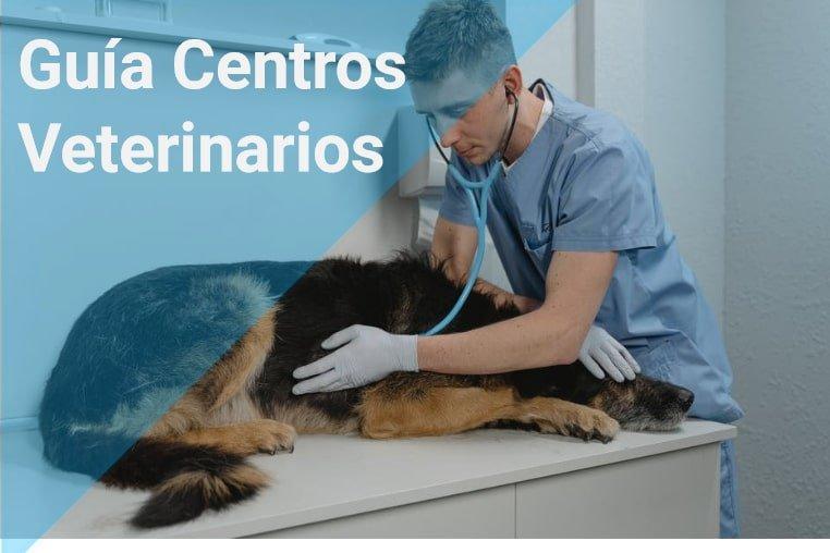centros veterinarios